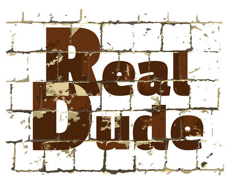 Real Dude printed on stylized brick wall. Textured inscription for your design. Vector illustration