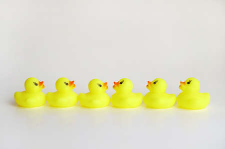 Yellow duck toy on white background. Business, Leadership, Teamwork or Friendship Concept. Photo Standard-Bild