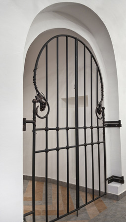wrought iron doors with decorative elements photo