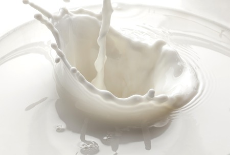 pouring milk splash isolated on white background photo