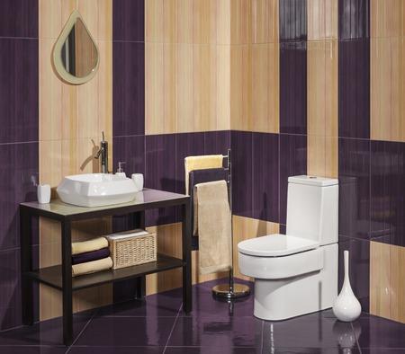 toilete: Detalle de un moderno cuarto de ba�o con lavabo e inodoro Foto de archivo