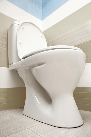 toilet: Toilet viewed from below