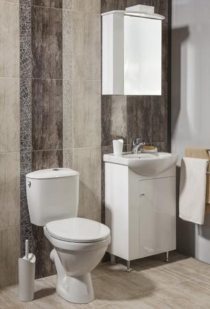 luxury apartment: luxury bathroom in apartment