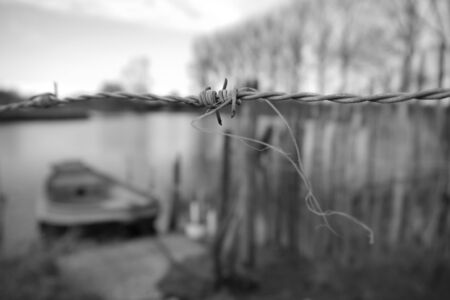 barbed: detail barbed wire Stock Photo