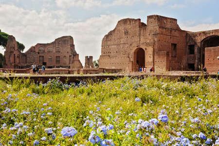 forums: The Roman Forums Stock Photo