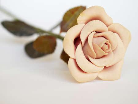 fake pink rose  on white background photo