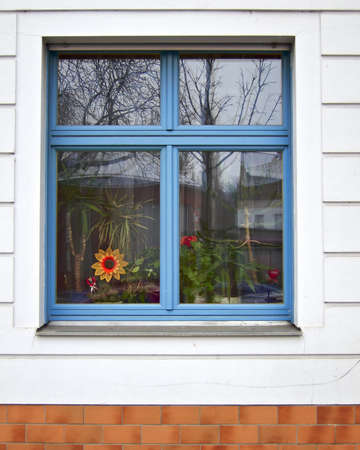 blue window and fake sunflower, Berlin Germany  photo