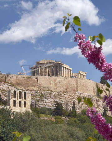 Parthenon and lilac, Athens Acropolis Greece Stock Photo - 16372277