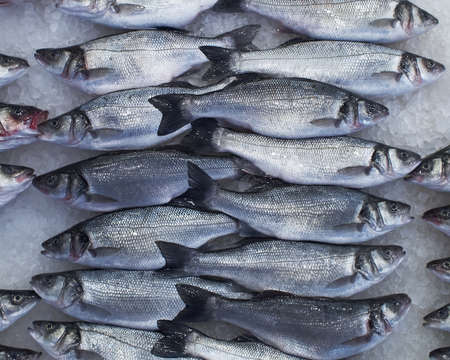 flathead: flathead mullets at the central market, natural background Stock Photo