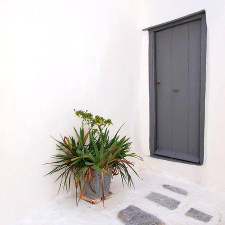 flowerpot: Door and flowerpot, Anafiotika, Athens Greece