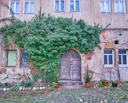 paveway: vintage door and ivy plant in Altenburg, Thuringen, Germany Editorial