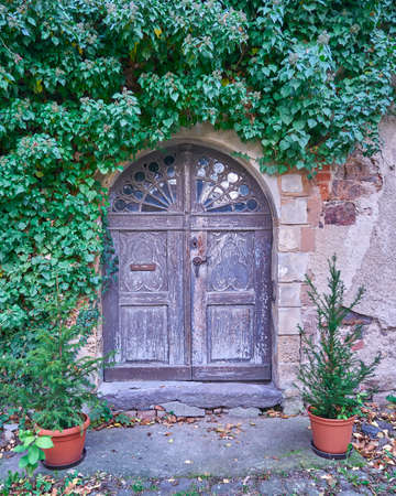 paveway: vintage door and ivy plant in Altenburg, Thuringen, Germany Stock Photo