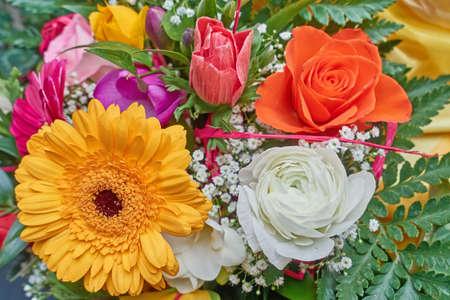 daisys: various colorful flowers bouquet closeup, natural background
