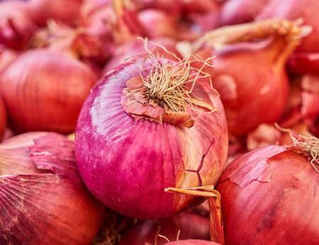 organic red onion closeup Stock Photo