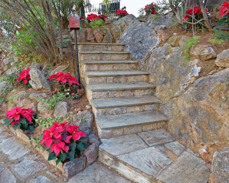 Stairs and zen garden decorated with Christmas red flowers