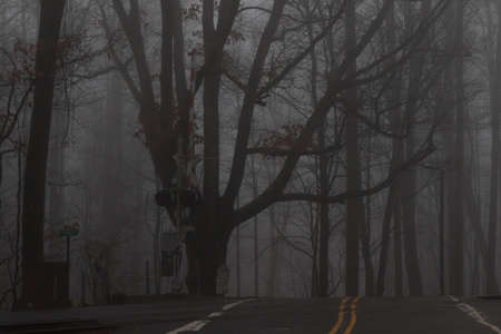 Railroad Crossing in the Mist, Balsam Mountain, Great Smoky Mountains, North Carolina 版權商用圖片