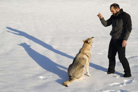 Dog training Stock Photo - 8947795