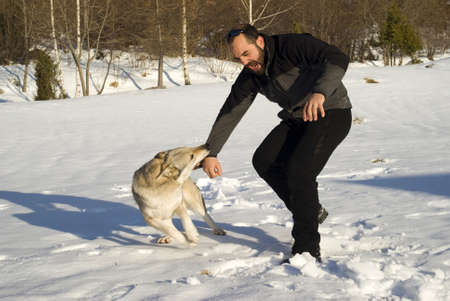 dangerous love: Attack dog