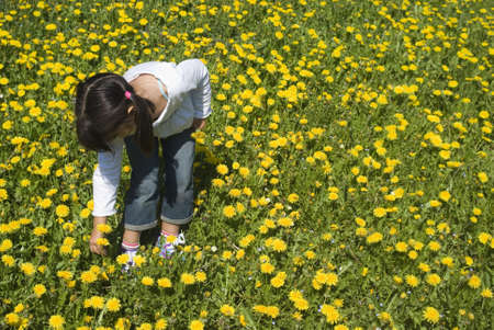 Girl picking flowers Stock Photo
