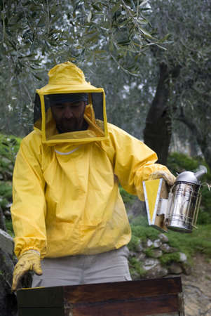 Beekeeper using smoker during hive maintenance photo