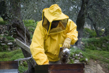 Beekeeper using smoker during hive maintenance Stock Photo - 12515169