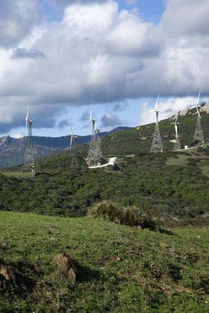 tarifa: Wind farm