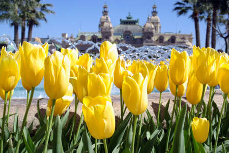 Spring in Monte Carlo Stock Photo - 16913371