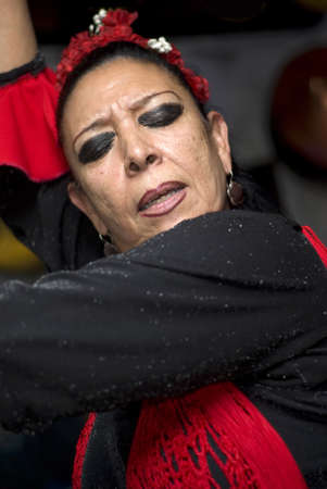"Granada, Spain - November 8, 2012: The flamenco dancer at ""La Rocío"""