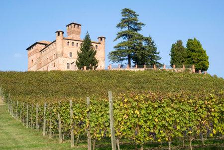 castle buildings: Castle of Grinzane Cavour in Piedmont region of Italy