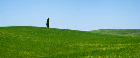 orcia: Countryside San Quirico Orcia  Tuscany Italy