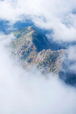 mountain range: Fog revealing the mountain range