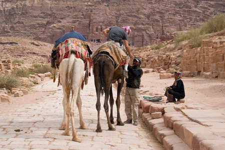 nabatean: Petra, Jordan - October 26, 2016: Bedouin man with camels in the ancient Nabatean city of Petra, Jordan