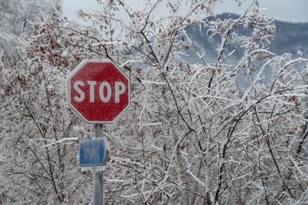 Stop sign covered in ice after the freezing rain 版權商用圖片