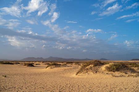 Corralejo Natural Park, Fuerteventura, Canary Islands, Spain