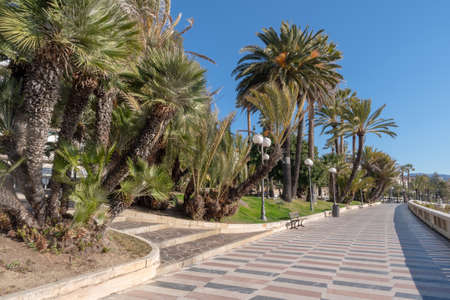 Sanremo, Italy. Promenade of the Empress (Corso Imperatrice) flanked by palm trees, alongside the sea Stock fotó