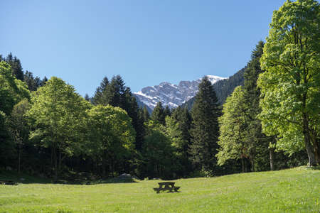 Marguareis Group, Pesio valley, Natural park of the Marguareis massif, boundary between Italy and France