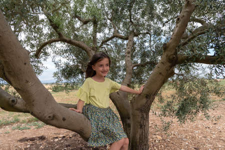 A child sitting on a olive tree in Provence, South France Imagens