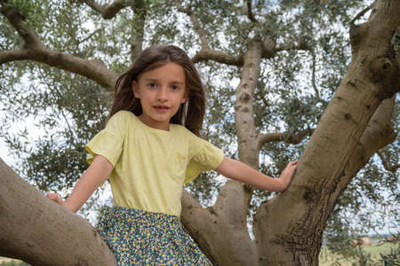 A child sitting on a olive tree in Provence, South France