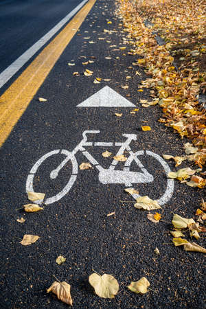 Bike path on the side of the city road in autumn Imagens
