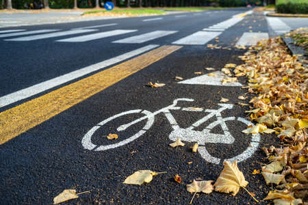 Bike path on the side of the city road in autumn Banco de Imagens - 131365339