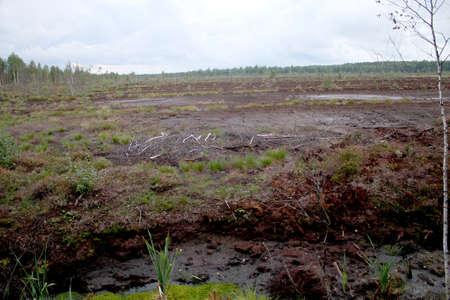 turba: Cantera de extracción de turba
