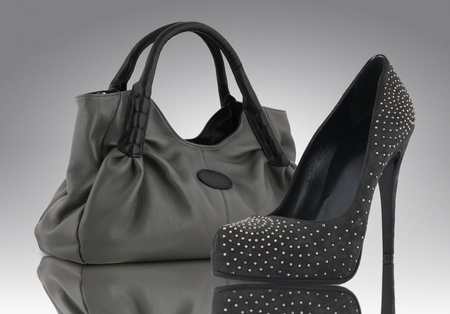 woman bag with shoe, accessory concept photo