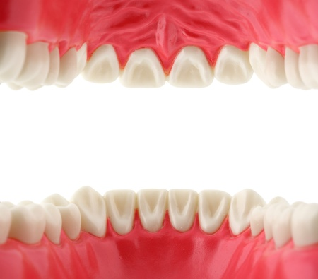 mouth cavity: mouth with teeth from inside  Stock Photo
