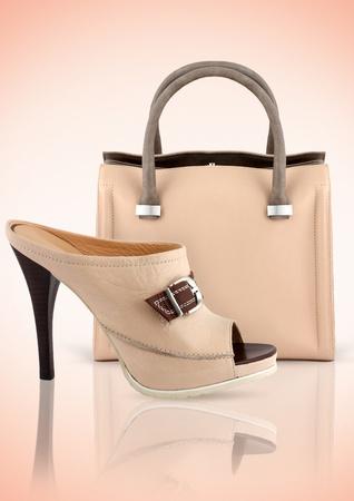 mujer de la bolsa con el zapato, el concepto de accesorios