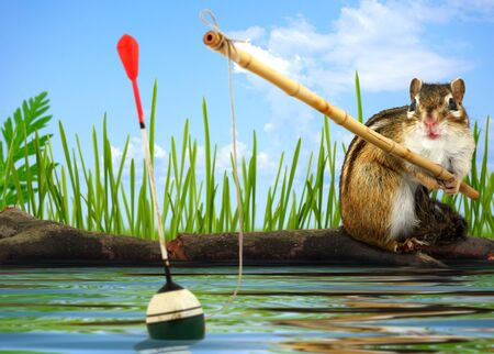Funny Little chipmunk fishing with fishing-rod, angler concept Stock Photo - 14589806