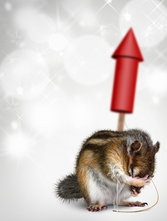 Funny chipmunk with fireworks, holiday background