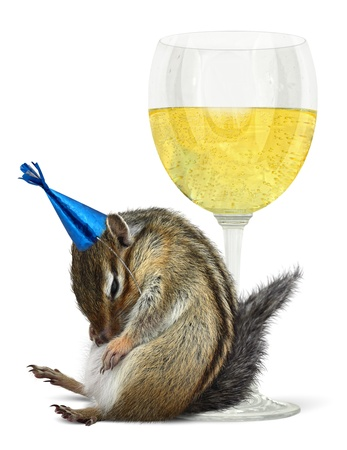 booze: Funny drunk chipmunk with glass, celebrate concept  Stock Photo