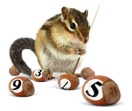 Funny chipmunk playing snooker with nuts photo