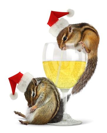 hangover: Funny drunk santas, chipmunks dress santa hat with champagne glass