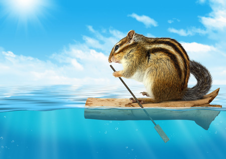 mariner: Funny animal, chipmunk floating at ocean, travel concept with copy-space
